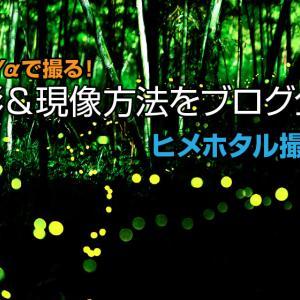 【ヒメホタル撮影】ソニー αを使った撮影&現像方法をブログ公開