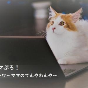 【お知らせ】ブログ移転しました。