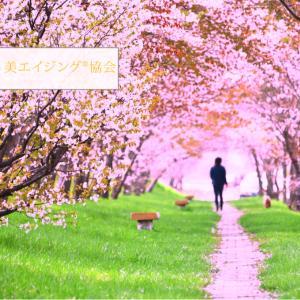 桜マジック「年齢を重ねるほどに美しくなる」アラフィー女性とは