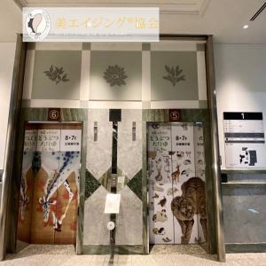 日曜美術館アートシーンで放映・千葉市美術館『帰ってきた!動物大行進』