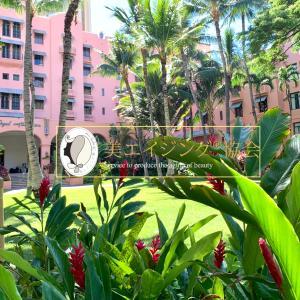 8月スタート「ハワイらしい花」レッドジンジャーから赤のパワーをもらう