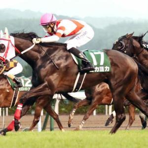 【悲報】ヨカヨカが競走能力喪失で引退・・・