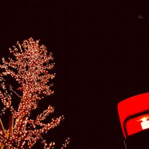 〚花空恋慕🌹🌙(カクレンボ)のフォトメッセージ🤳💌〛20.12.22〜『早ク…』