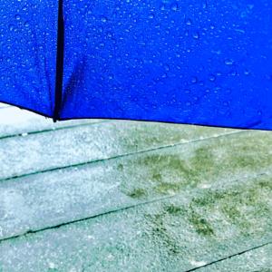 〚花空恋慕🌹🌙(カクレンボ)的 #404美術館 🖼〛2021.2.18〜『【淋シガリ】 …』
