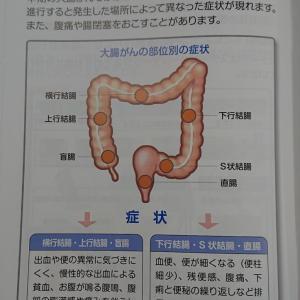 ステージ「Ⅲb」と診断された横行結腸癌、結局は「Ⅳ」へ格上げ