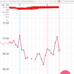 【漢方療法5周期目】〜高温期3日目〜