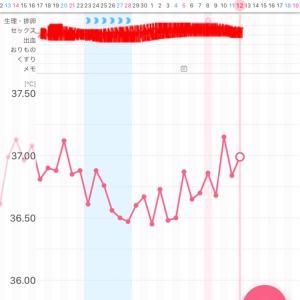 【漢方療法6周期目】~D19・高温期3日目~