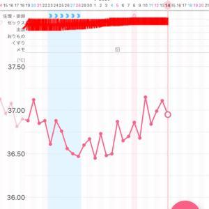 【漢方療法6周期目】~D21・高温期5日目~