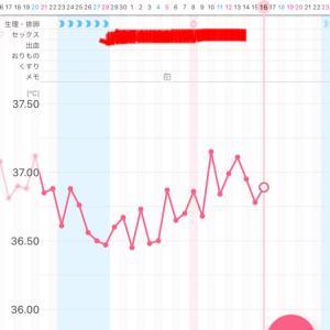 【漢方療法6周期目】~D23・高温期7日目~