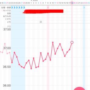 【漢方療法6周期目】~D25・高温期9日目~