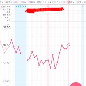 【漢方療法7周期目】~D23*高温期8日目~