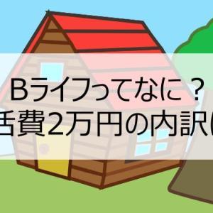 【生活費2万円のローコストライフ】Bライフとは?基本的考え方、誰が向いているのか、生活費2万円の内訳を説明します