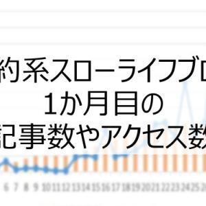 【ブログ運営報告】1か月目のアクセス数と記事数