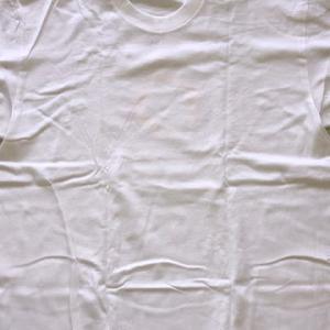 白いTシャツ 2