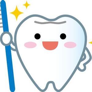 さすらいの歯医者探し