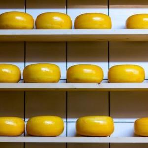 どれくらいビットコインが貯まる?チーズアプリを30日間チャレンジ