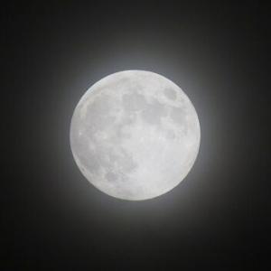 明日は満月ですが・・・
