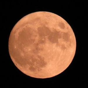 明日は中秋の名月でしかも満月!