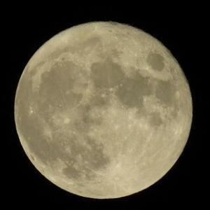 きれいな月夜になりました