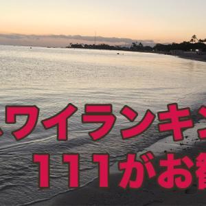 ハワイ旅行に行く時に役立つランキングを紹介!お勧めは「111」ハワイアワード