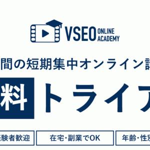 VSEOオンラインアカデミーのもんは詐欺?VSEOマーケターの副業では稼げないのか