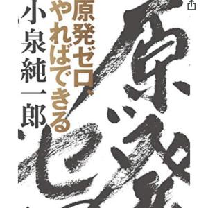 小泉元総理の「原発ゼロ、やればできる」を読んだ