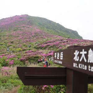 ミヤマキリシマin平治岳
