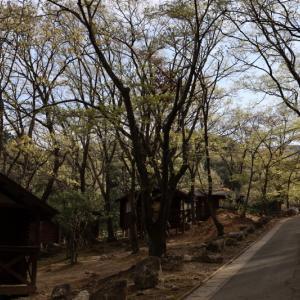 昭和の森からツキ谷Bコースで三郡山~宝満山
