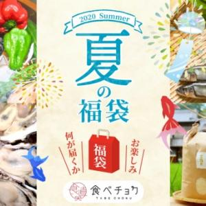 【食べチョク】夏の福袋2021 野菜・果物・肉・魚など全31種類 6月22日発売!