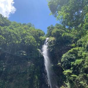 [香港]本気の滝でマイナスイオン満喫!〜梧桐寨瀑布
