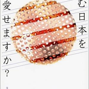 沈む日本を愛せますか?、政権交代とは何だったのか、政権交代が必要なのは、総理が嫌いだからじゃない