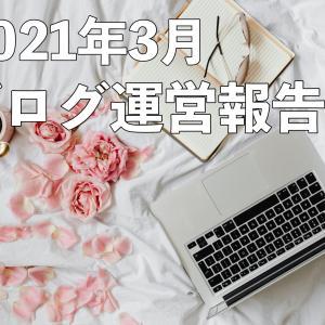 【ブログ運営報告】動画とブログの連動【WordPress移行後・9ヶ月】