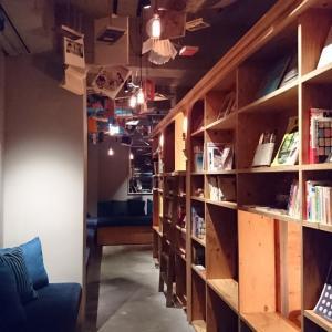 本棚の中で眠れる夢の世界!