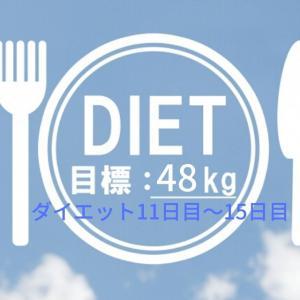【ダイエット記録3】外出自粛・在宅勤務で太りたくない!レコーディング11日目~15日目!
