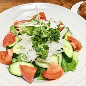 【10日で-1㎏減】おかずサラダダイエットを始めてみた!我慢しないけどカロリー制限しやすいダイエット!【ダイエット】