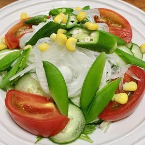 【10日で-1kg②】ダイエット開始から20日、サラダダイエットの効果を実感!【ダイエット】