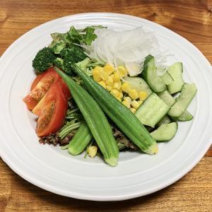 【10日で-1kg③】サラダダイエット開始から1ヵ月、-2.2㎏減達成!【ダイエット】
