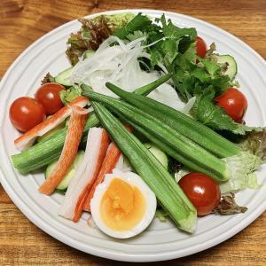 【10日で-1kg④】サラダダイエット開始から40日、停滞期突入も体調が良い!【ダイエット】