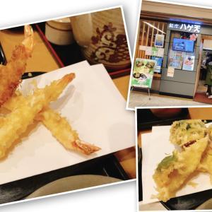 【銀座ハゲ天】老舗天ぷら屋ハゲ天に行くならランチがお得!ランチでも揚げたて天ぷらを食べれる!【川崎アゼリア】