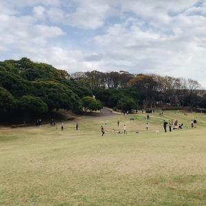 【根岸森林公園】芝生が広がる公園でお花見やピクニックや散歩を楽しもう!【横浜】