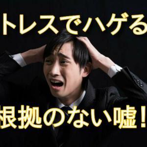 【デマ】ストレスでハゲるは嘘!【円形脱毛症は?】