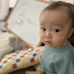 生後8ヶ月に。