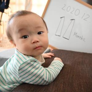 生後11ヶ月に。
