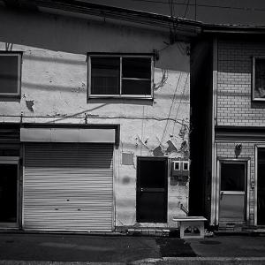 人魚の眠る家。