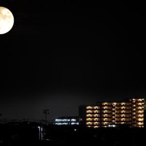 ベランダから月をめでる。