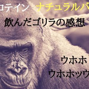 マイプロテインナチュラルバナナ味レビュー【ゴリラ向け】
