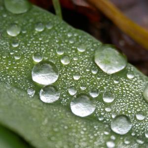 6月は湿気が多くて困る!湿気対策として換気扇を使う方法とは?