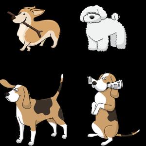 犬にわさびは大丈夫?わさびを食べた時の症状や対処法とは?わさびの他に犬が食べてはいけない食べ物や香辛料についても解説!
