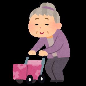 【事故】高齢女性がワゴンにはねられ死亡。鹿児島県鹿屋市