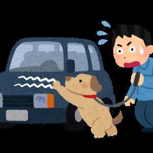 【器物損壊】県外ナンバーの車を傷つける男を逮捕。富山県富山市堀河町